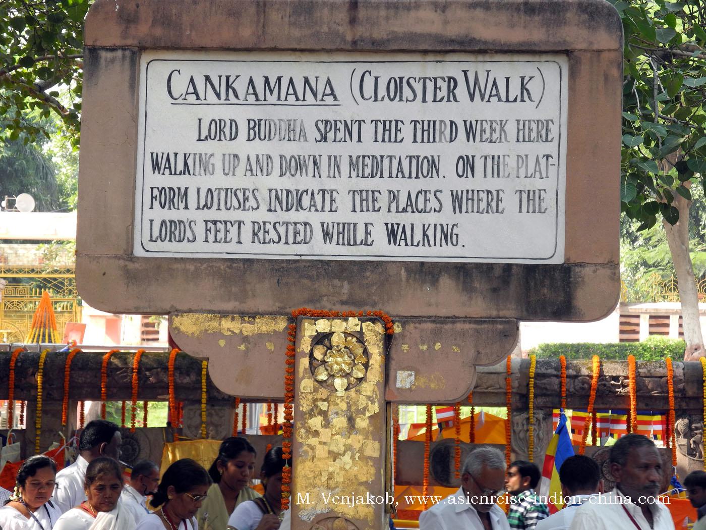 siddhartha gautama buch